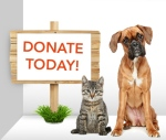 image-donate